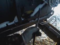 Обзор нового ACROS 550 от Стаса Бредихина.mp4